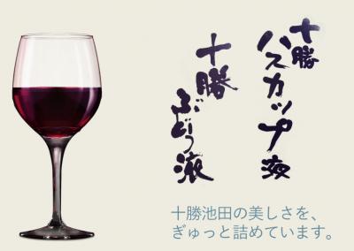 池田ワイン製菓㈱